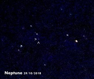 Neptune29.10.18